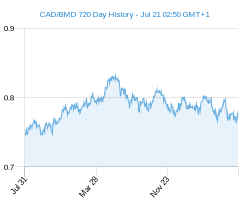 CAD BMD chart - 2 year